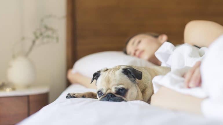 Teeth Grinding in Sleep - Featured