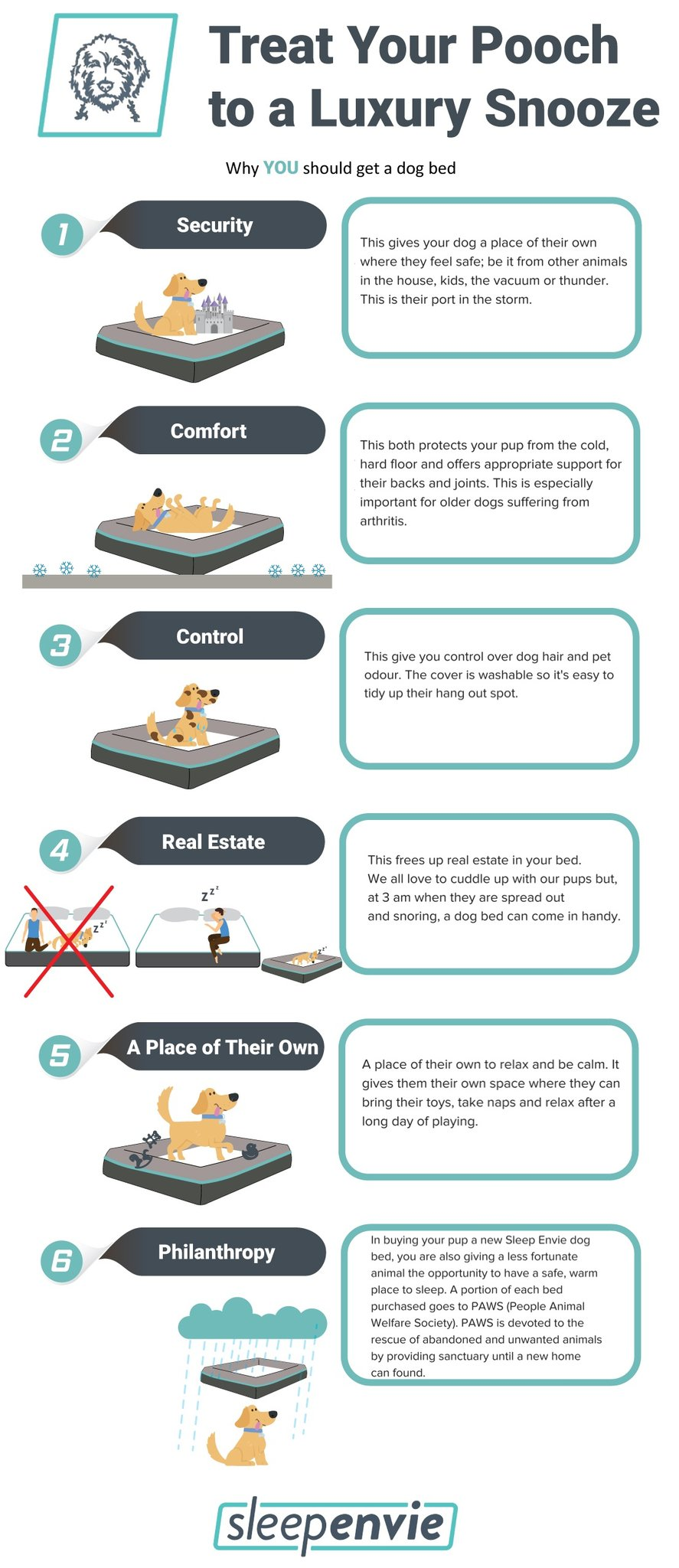 How Much Do Dogs Sleep - Dog Beds