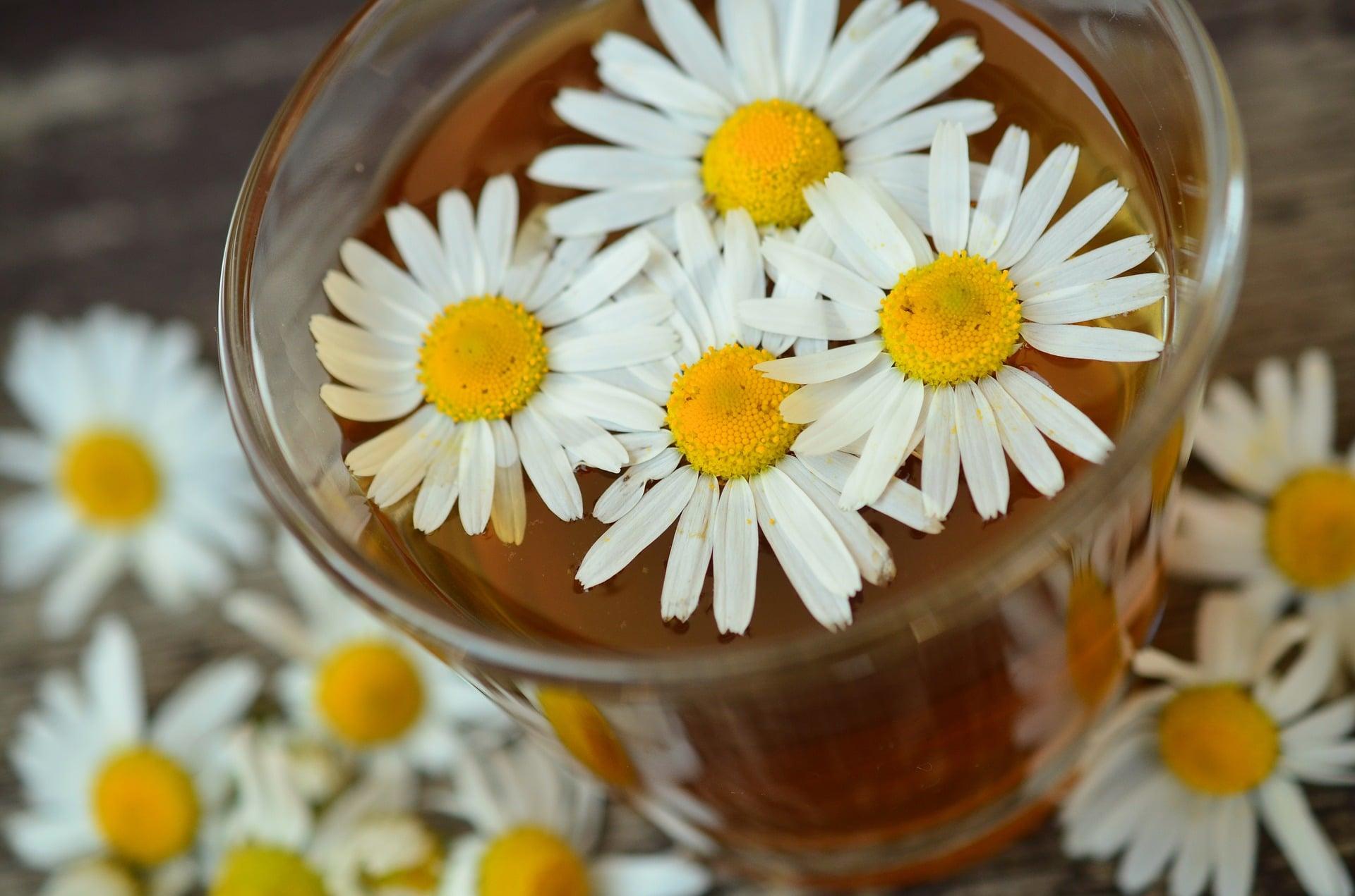 Foods That Help You Sleep - Chamomile Tea