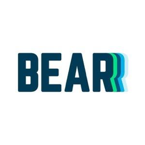 Best Hybrid Mattress - Bear