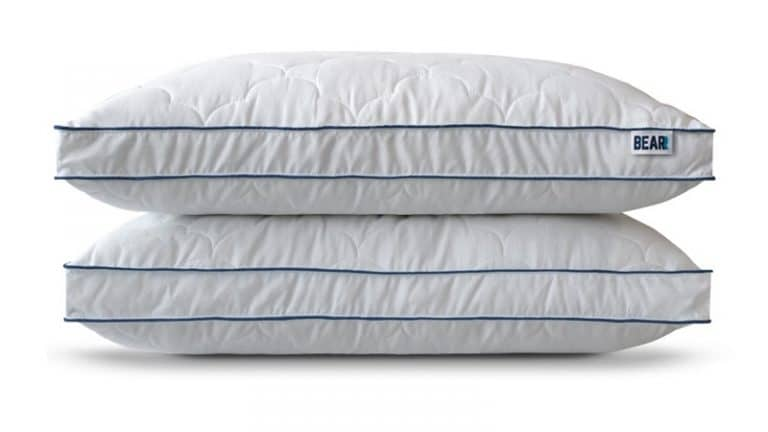 Bear Pillow Review - Cloud Pillow