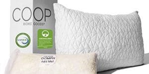 Coop Home Goods Pillow Review - Featured